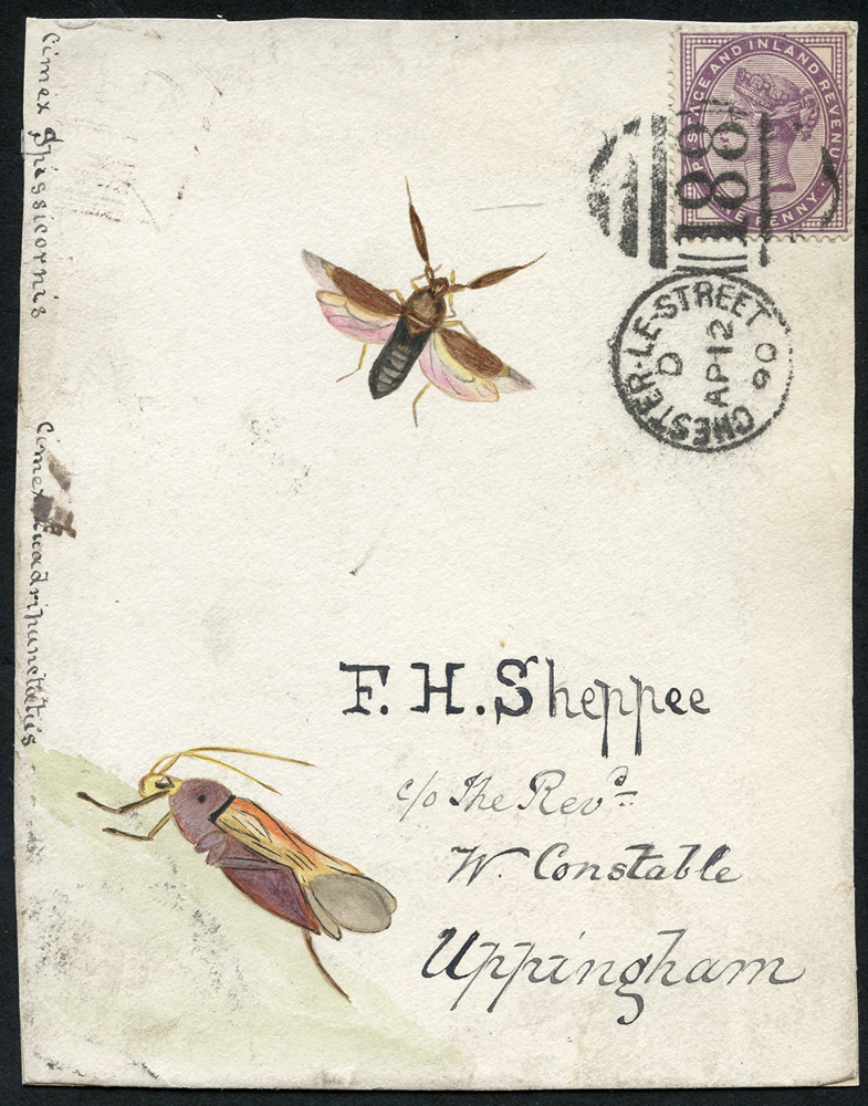 1890 hand painted water colour (two insects) cover front, 1d lilac, Chester Le Street duplex to Uppingham