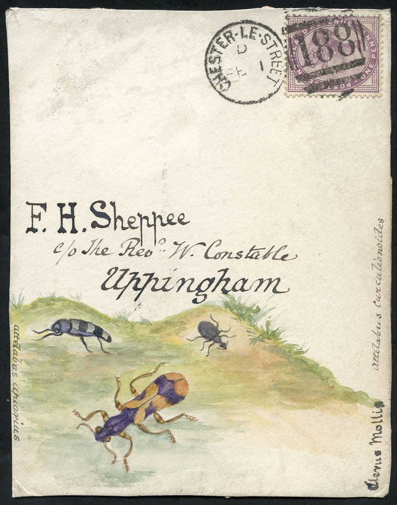 c1890 hand painted water colour (three beetles) cover front, 1d lilac, Chester Le Street duplex to Uppingham