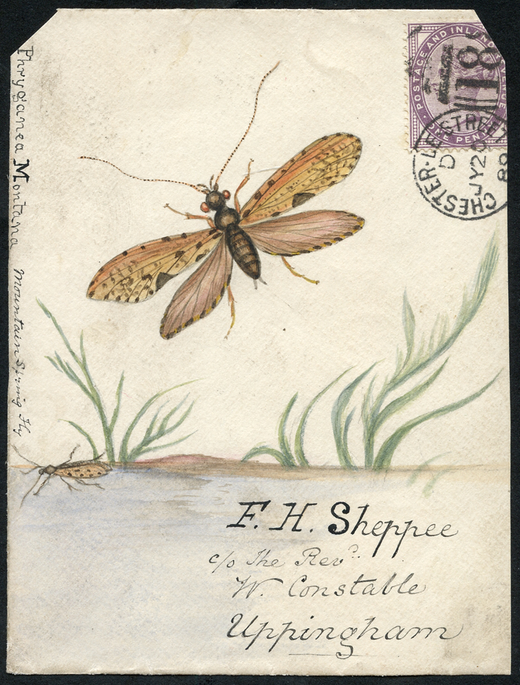 1889 hand painted water colour (mountain spring fly) cover front, 1d lilac, Chester Le Street duplex to Uppingham