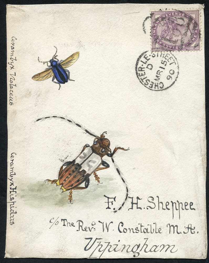 1890 water colour (two insects) cover front, 1d lilac, Chester Le Street duplex to Uppingham