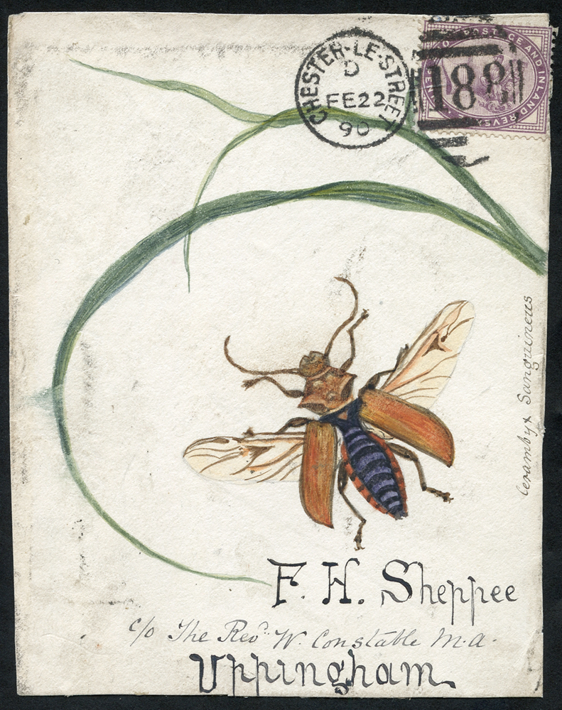 1890 hand painted watercolour (Cerambyx Sanguineus) cover front, 1d lilac, Chester Le Street duplex to Uppingham