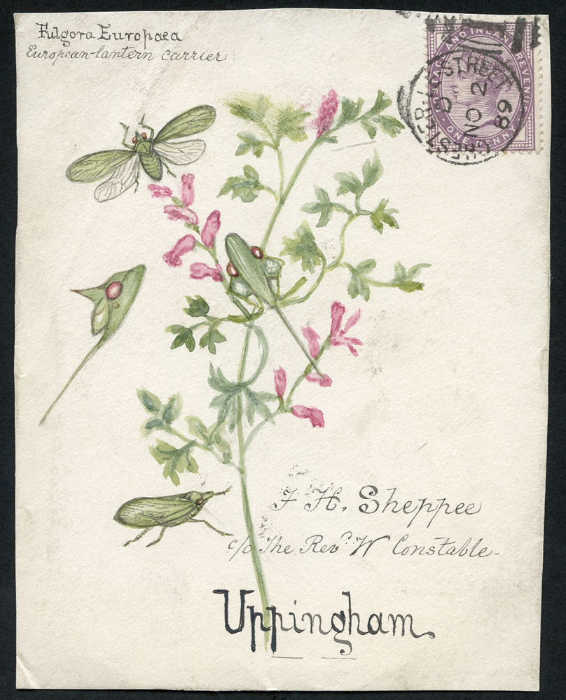 1889 hand painted watercolour (moth & flower) cover front, 1d lilac, Chester Le Street duplex to Uppingham