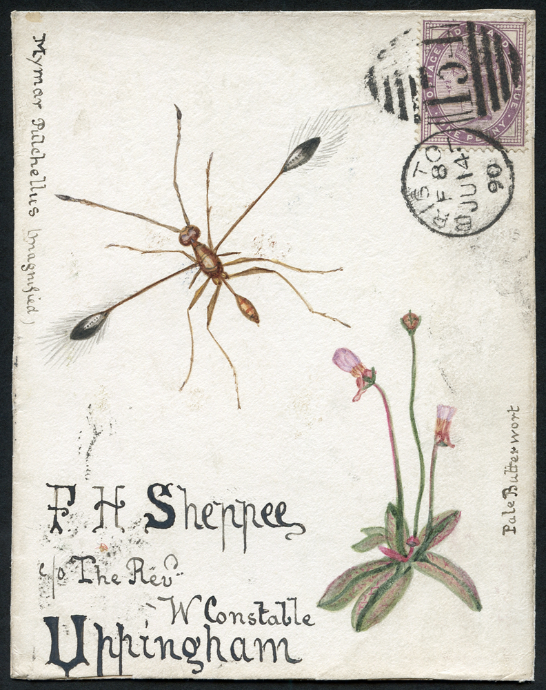 1890 hand painted watercolour (Pale Butterwort) cover front, 1d lilac, Chester Le Street duplex to Uppingham