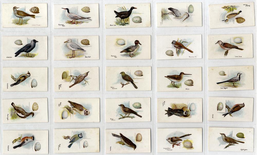 Lambert & Butler 1906 Birds and Eggs, complete set of 50, Cat. £150