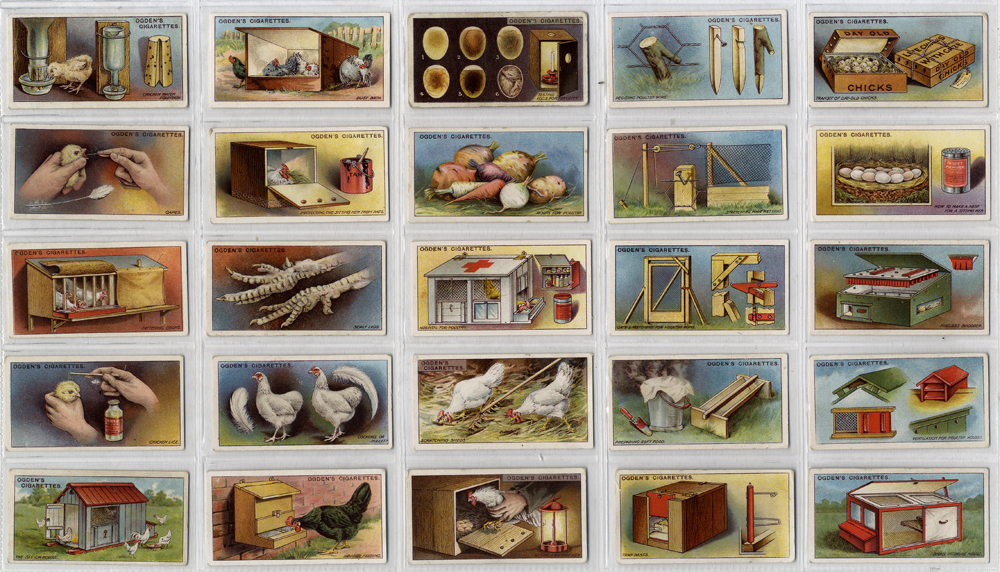 Ogdens 1922 Poultry Rearing & Management, complete set of 25, Cat. £75