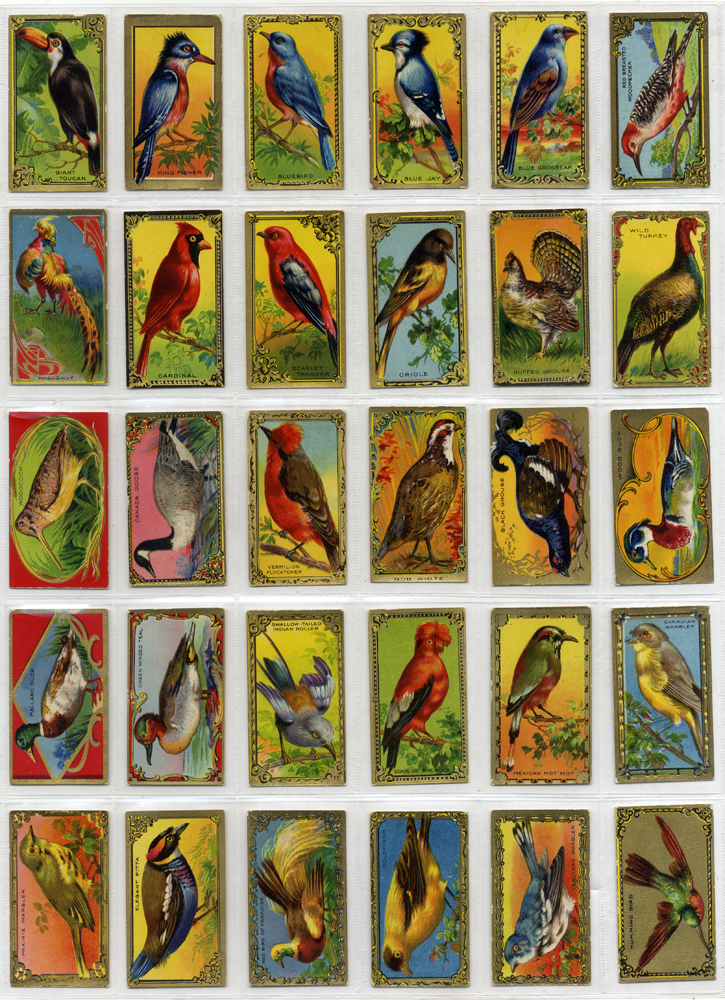 Imperial Tobacco (Canada) 1925 Game Bird Series, complete set of 30, Cat. £60