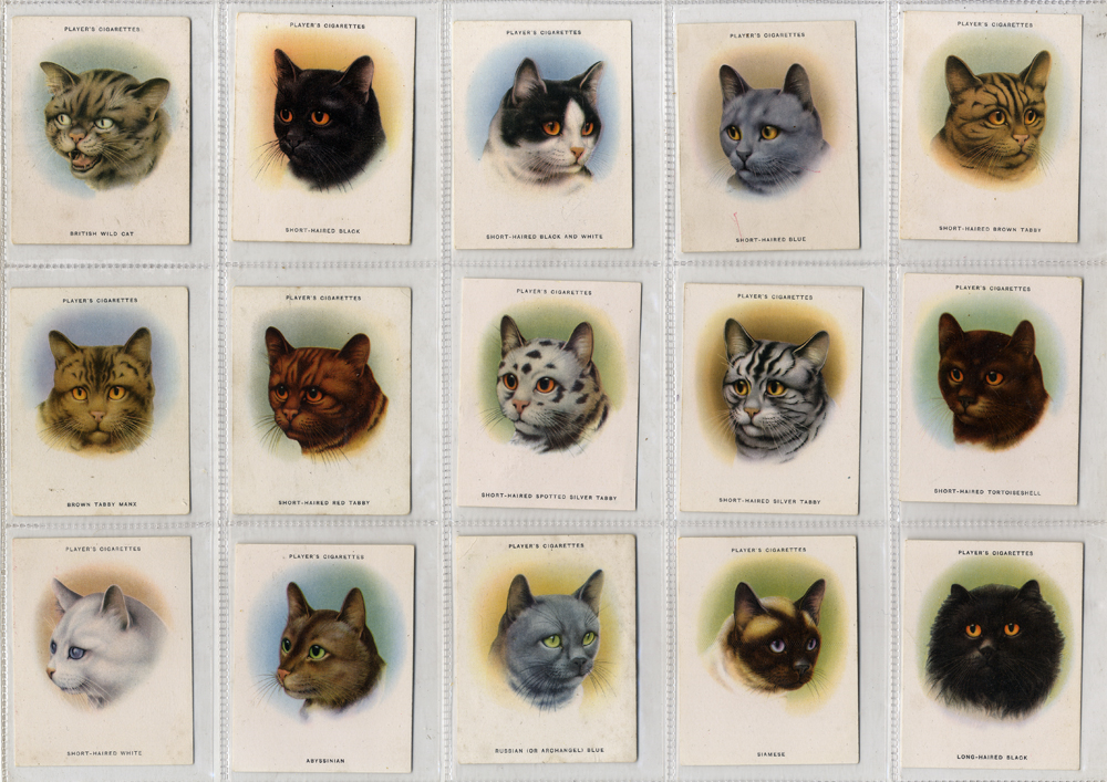 John Player 1936 Cats, complete set of 24, Cat. £168