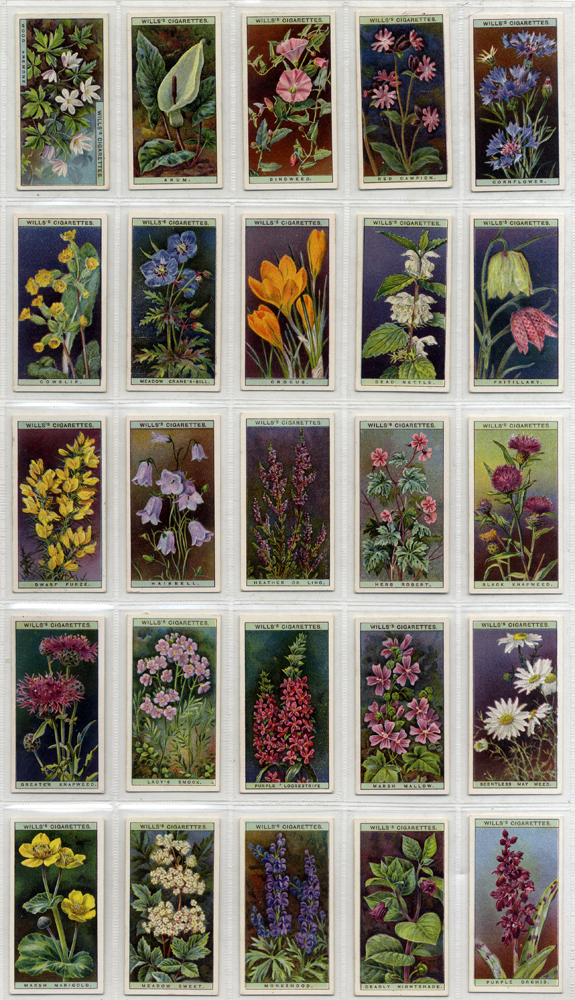 Wills 1923 Wild Flowers, complete set of 50, Cat. £35