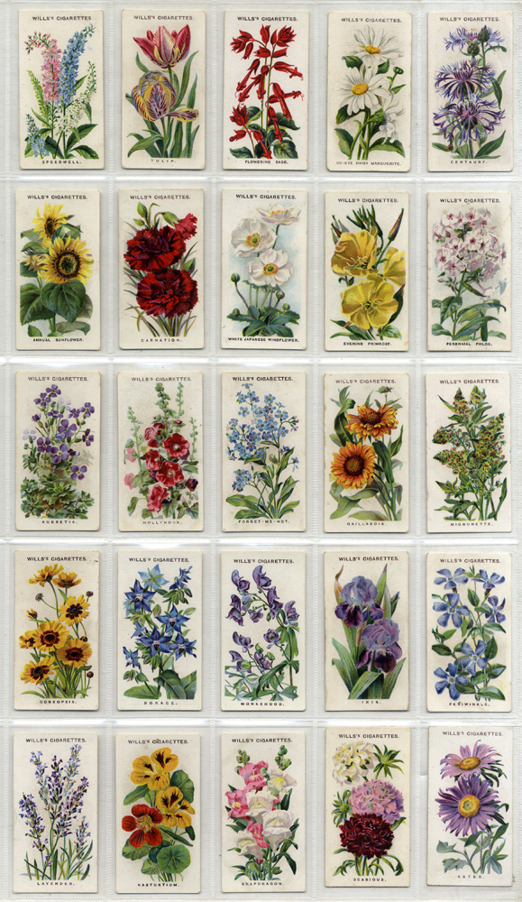 Wills 1910 Old English Garden Flowers, complete set of 50, Cat. £65