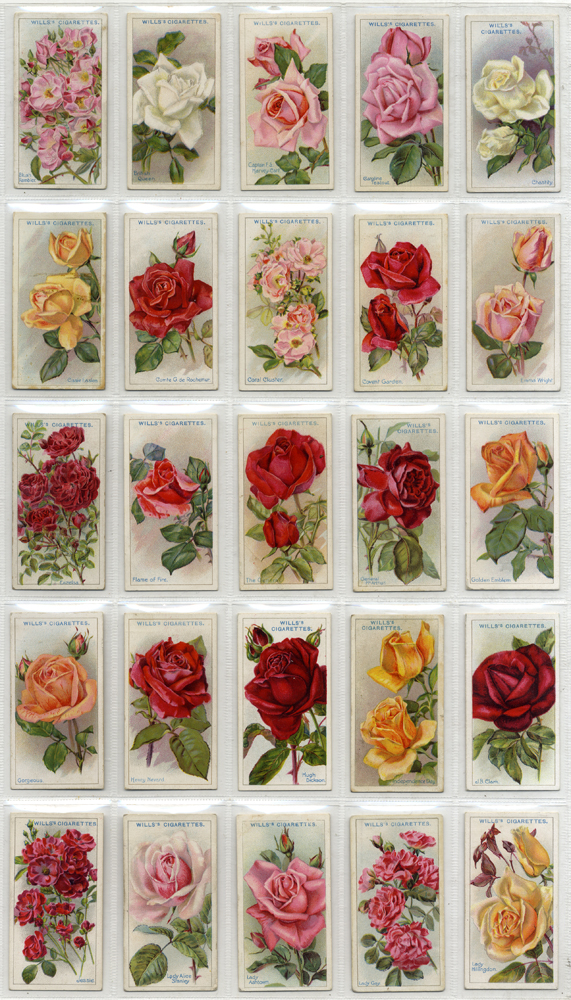 Wills 1926 Roses (different), complete set of 50, Cat. £50