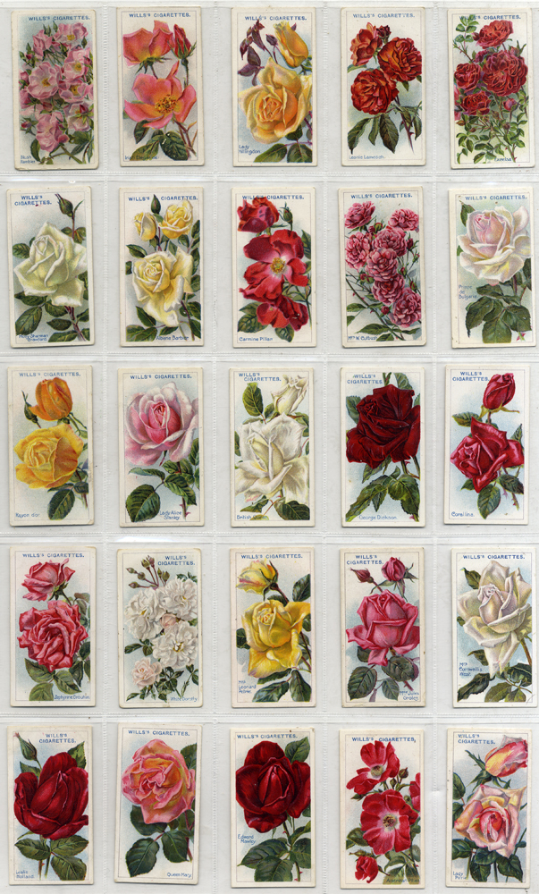 Wills 1914 Roses, 2nd series 51-100, complete set of 50, Cat. £75
