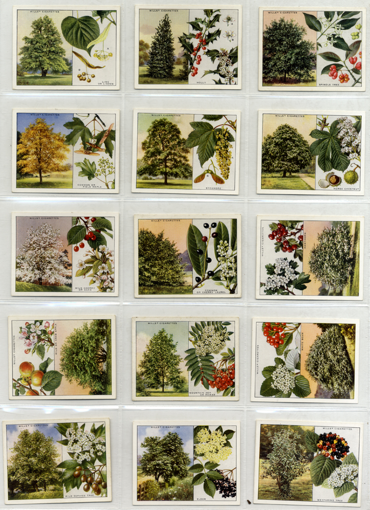 Wills 1937 Trees, complete set of 40, Cat. £64