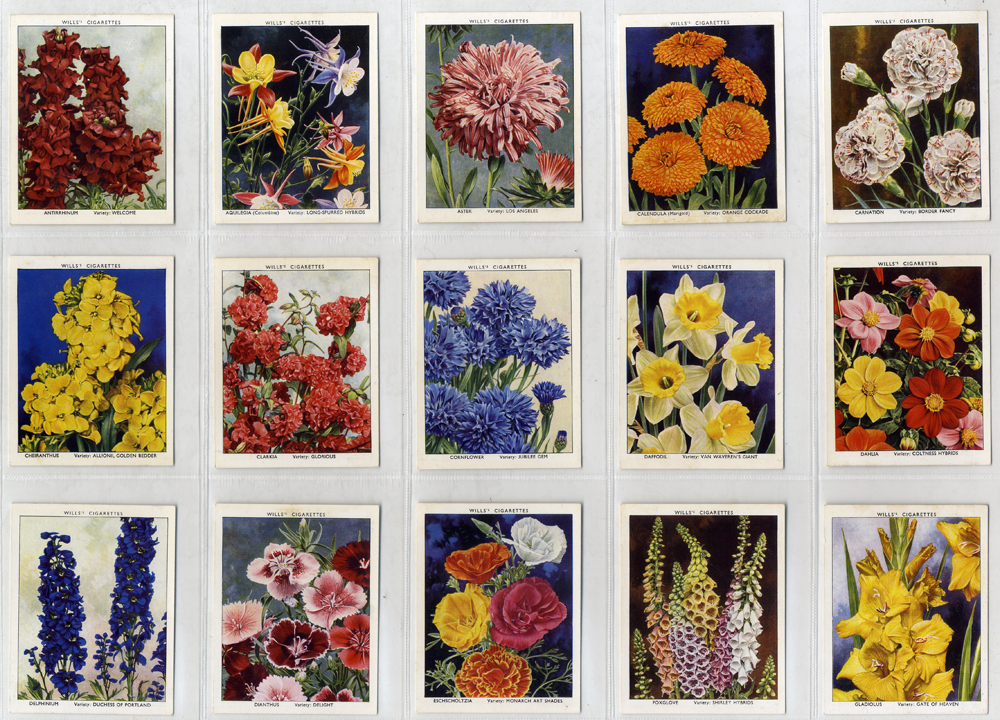 Wills 1938 Garden Flowers New Varieties, A series, complete set of 40, Cat. £28