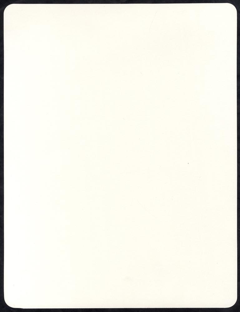 EXHIBITION QUALITY ALBUM PAGES - Standard Size (no grid)